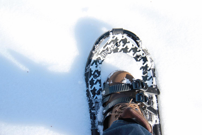 トレッキングポールスノーシューセットのギャラリー画像