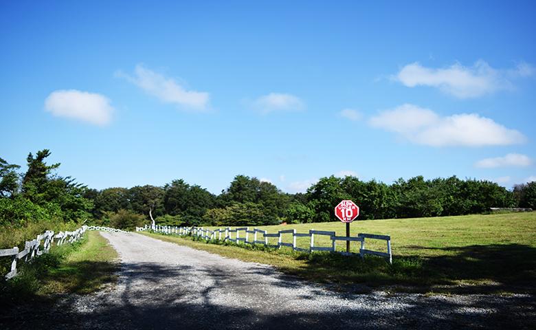 fFBI大山 キャンプ サイト
