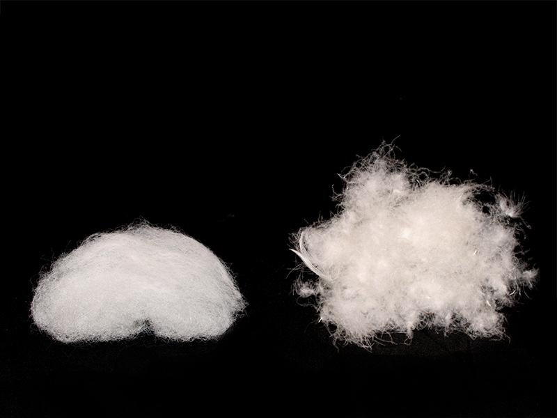 ギンノタラコの各部の特徴(蓄熱加工中綿)