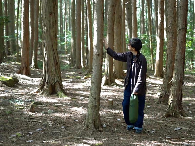 トゥリーラブ木